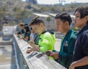 male students on pier looking down into the water