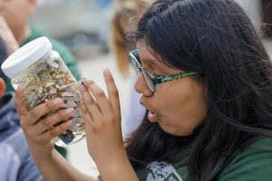 Student observing shells at Birch Aquarium at Scripps Institution of Oceanography